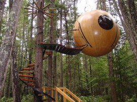 cool-tree-house