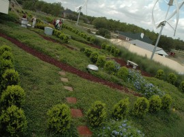 18 garden roof Houston - agrilifetoday