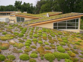 21 Green Roof at Walter Reed CC -Arlington County