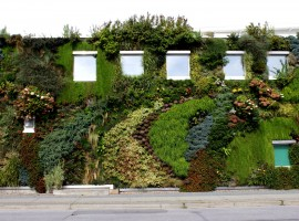 25 Green Wall at Semiahmoo Library. Surrey, BC-danna (curious tangles)