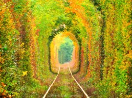Carmencitta-Tunnel-of-Love-Ukraine