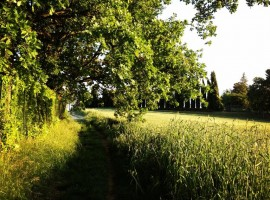Bed & Breakfast Ecosostenibile Ilpuntodivista a Chieri, Torino