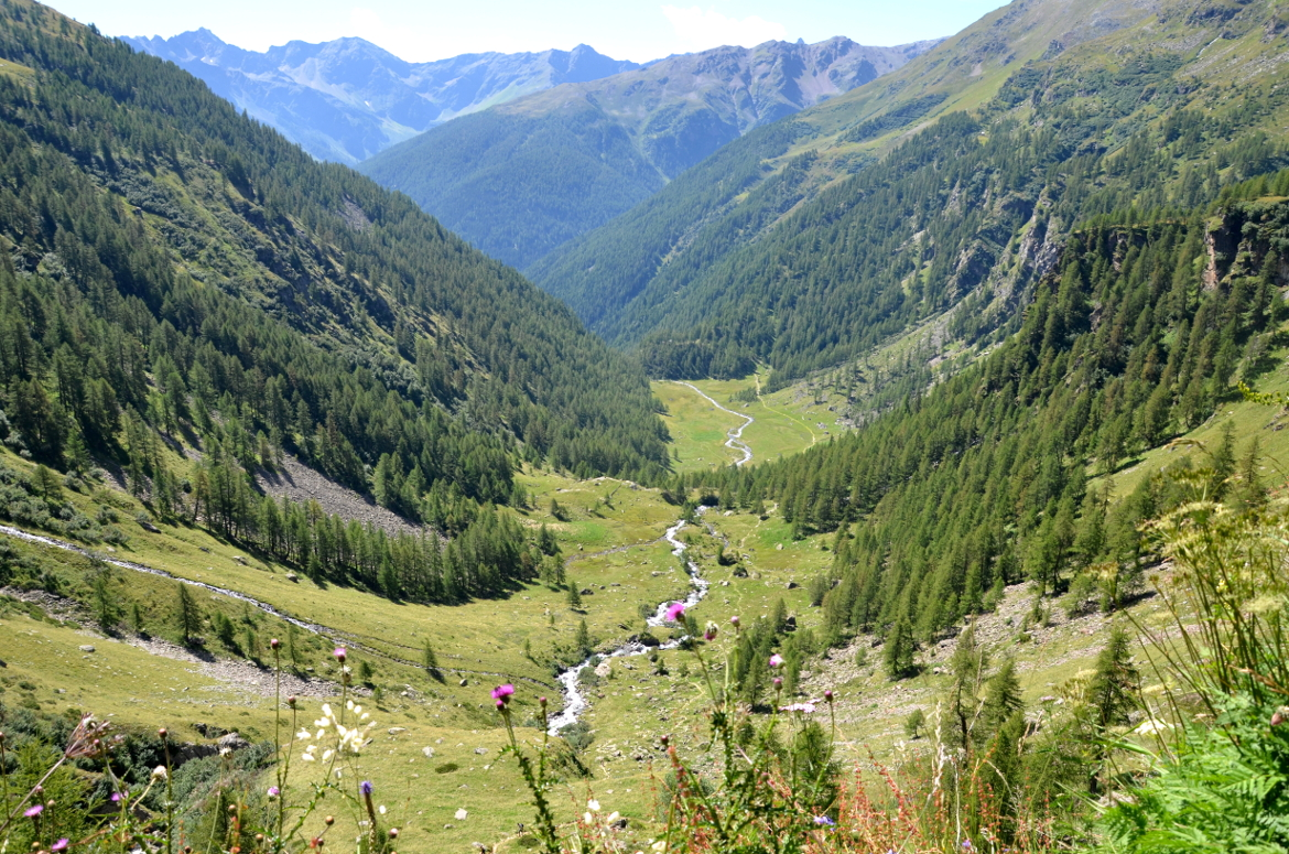 Rabbi Valley, Stelvio Natural Park