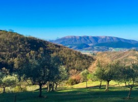 Podere Vallescura, Off The Grid
