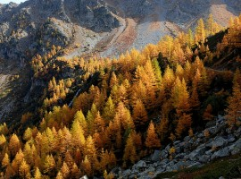 Autumn in the White Mountain, Aosta, ph. by  jplust, via Flickr
