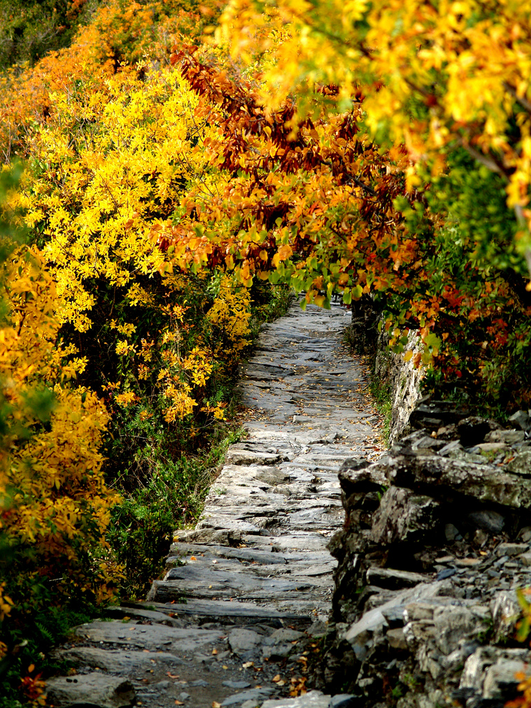 Autumn in Liguria, Cinque terre, ph. by soundpatterns, via Flickr