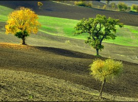 Autumn in the Marche countriside, ph. by Gigi62, via Flickr