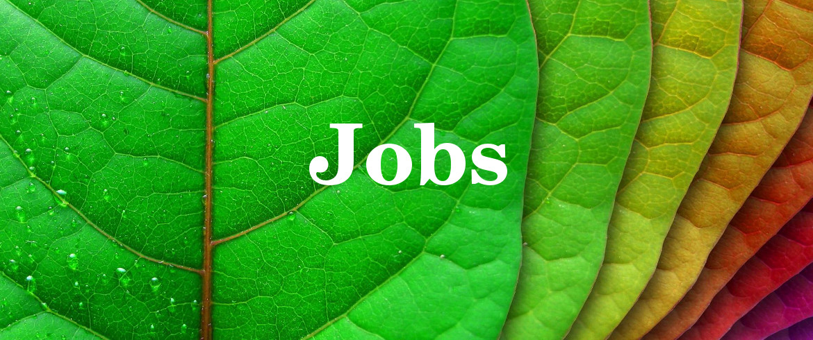 new arrival 3d1b3 765e0 Jobs  work with us! - Ecobnb