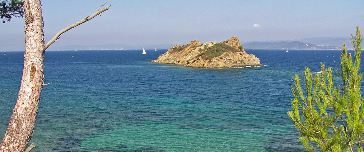 Pink Flamingos White Beaches And A Sip Of Rosé My Trip To The - Location port cros