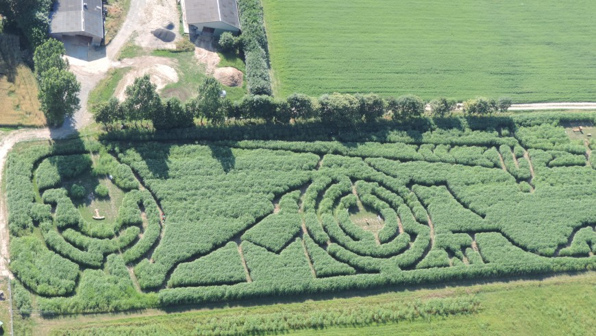 Extrêmement Labyrinths in France: discovering Natural riddles - Ecobnb PJ13