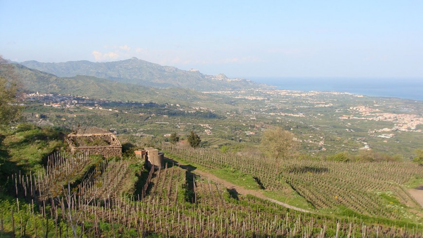 The view from Bagolarea farmhouse