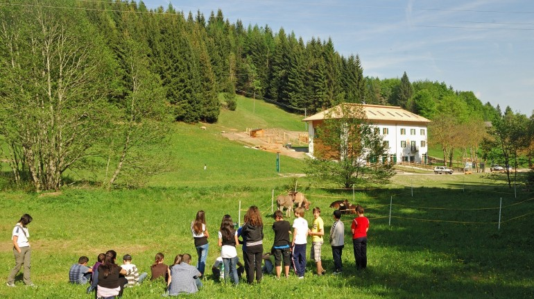 Eco holidays in Trentino