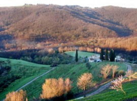 WWF oasis in the heart of Lombardy
