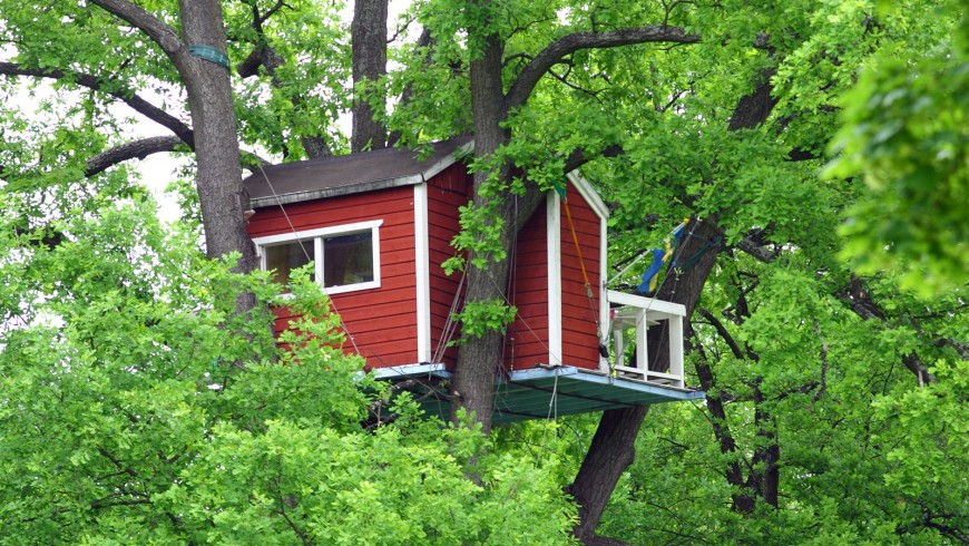 Sleeping in a tree house