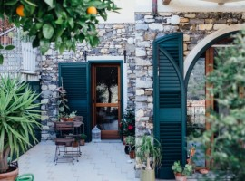 A holistic space between the olive trees