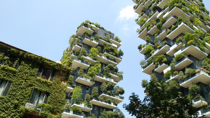 10 Things You Can Do to Build Green