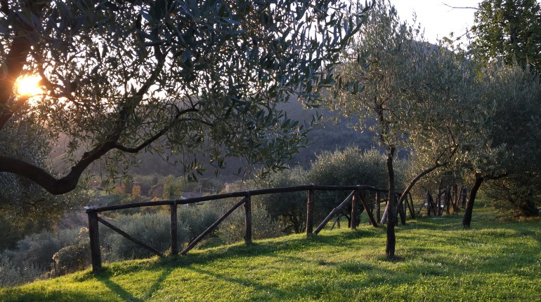 Destination Val di Vara, the most organic valley in Italy