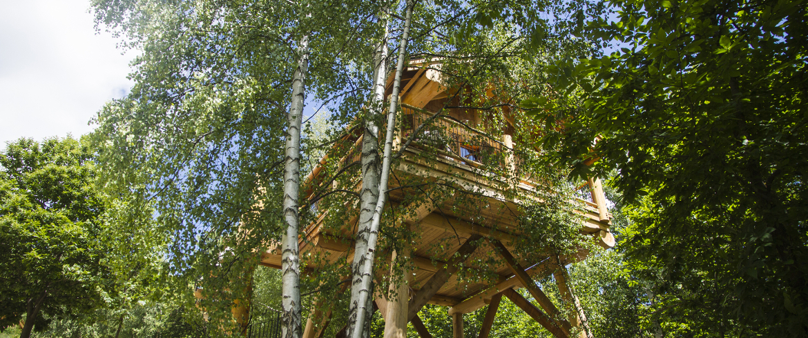 Amazing eco friendly tree houses in piedmont italy for Casa albero italia