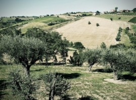 A holiday by electric car in Italy: Bed & Breakfast Morganti