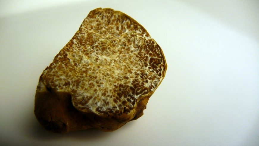 White truffle, Castel D'Aiano, photo via flickr