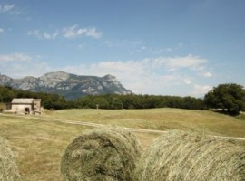 Mountains and countryside: the perfect match for a holiday into the nature