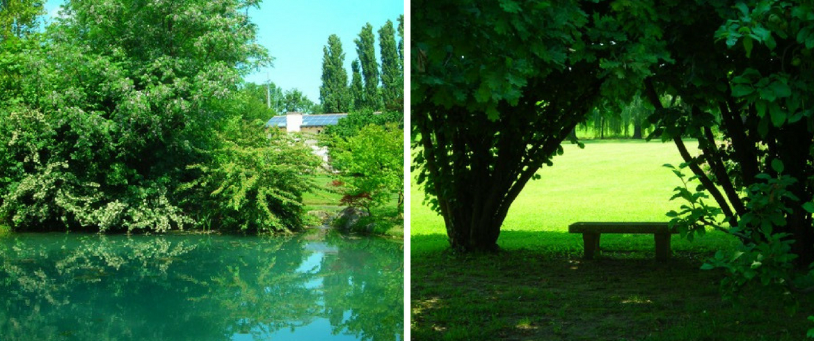 """The """"Solo Qui"""" B&B in the green of the Venetian countryside, Italy"""