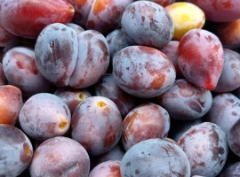 Local plums