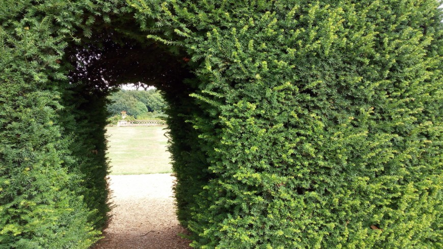discovering Bowood gardens