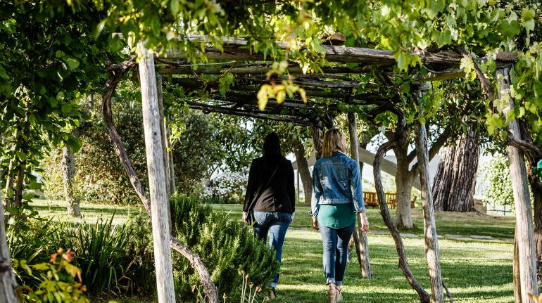 The vineyards and landscapes of the Tuscan Maremma
