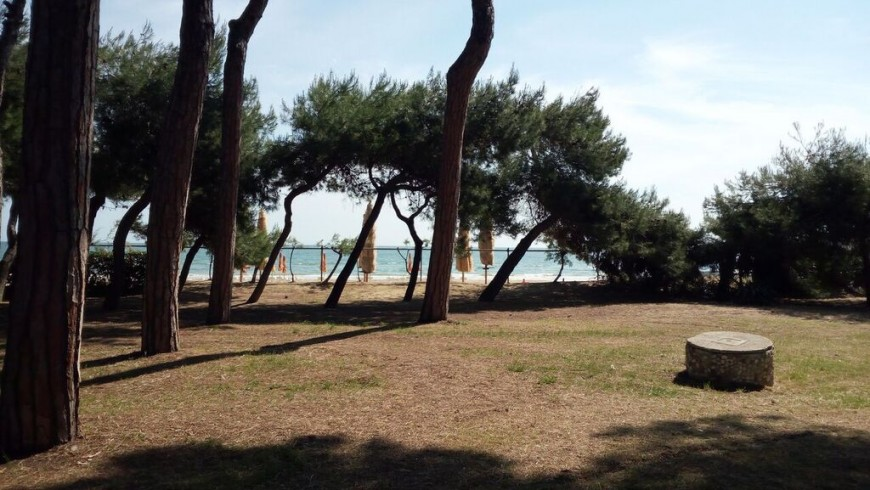 Cerrano Park: here is why you must visit it