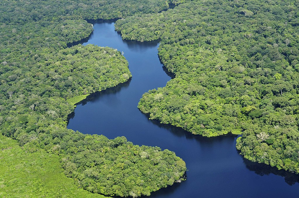 Aereal view of the Amazon Rainforest, Brazil
