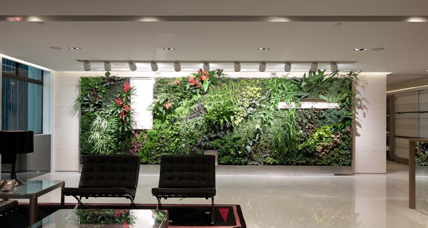 Green walls in modern offices chairs in the front