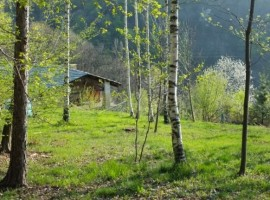Payer house in the forest, Piedmont