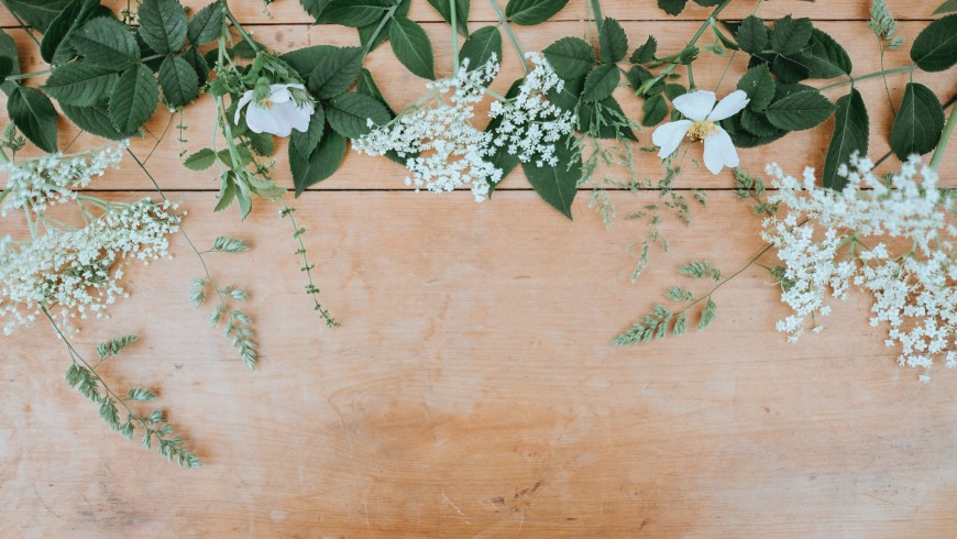 white flowers on a table