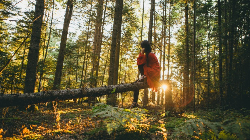 woman sitting on a tree into the forest. A 7-Steps Guide to Starting Your Own Eco-Friendly Travel Blog