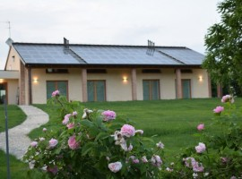 Casa Fiorindo's outdoor, roses and lawn