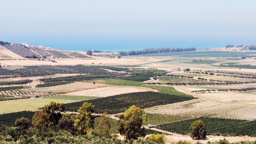 Nature of Belice's Valley, Western Sicily