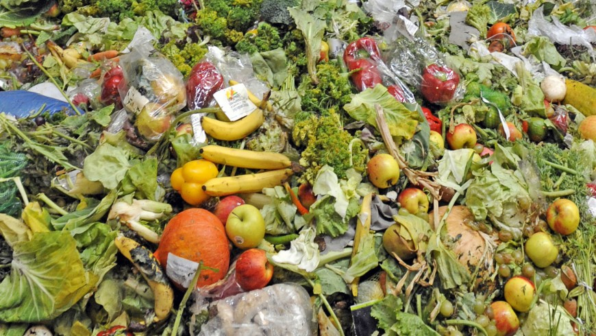 Stop wasting food to slow down climate change