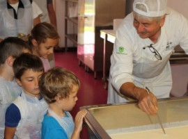 educational activities with children and operators