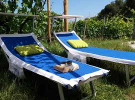 A sustainable stay in Imperia