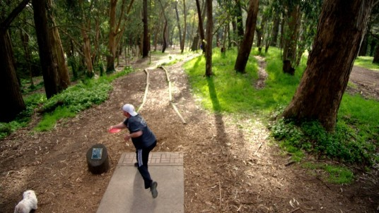a disc golf field built in a forest, it does not provoke any damage to the environment