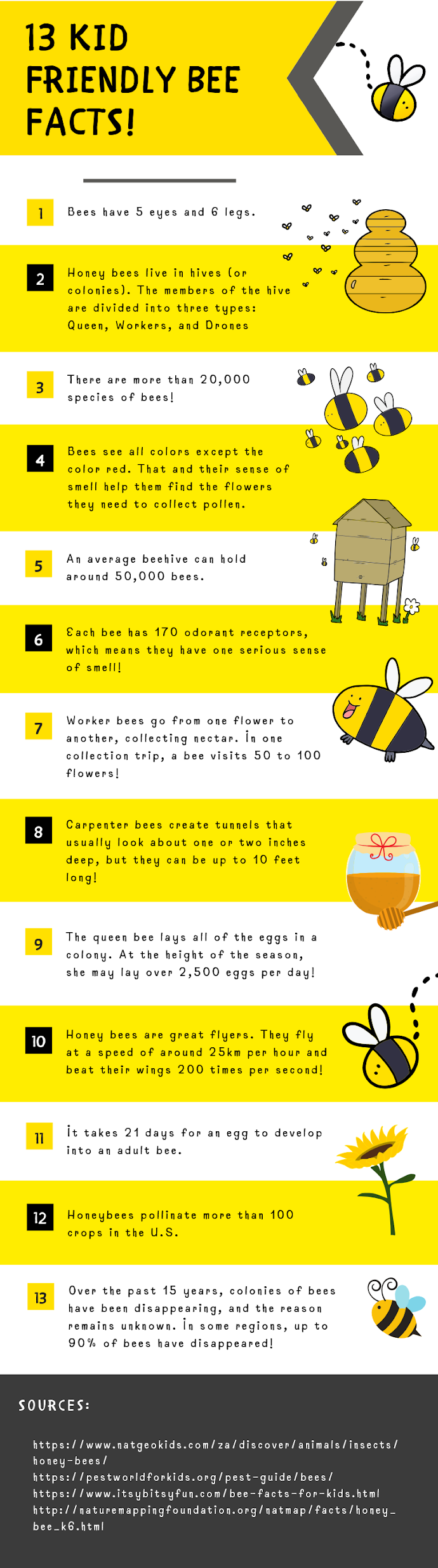17 fun facts about bees