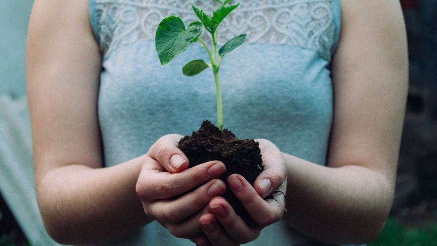 save the planet with plants