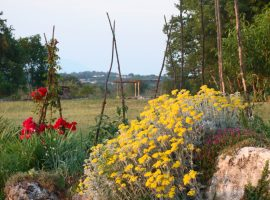 Glamping Freedom Istria