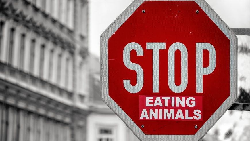 street sign saying that people must stop eating animals, to prevent animal extinction