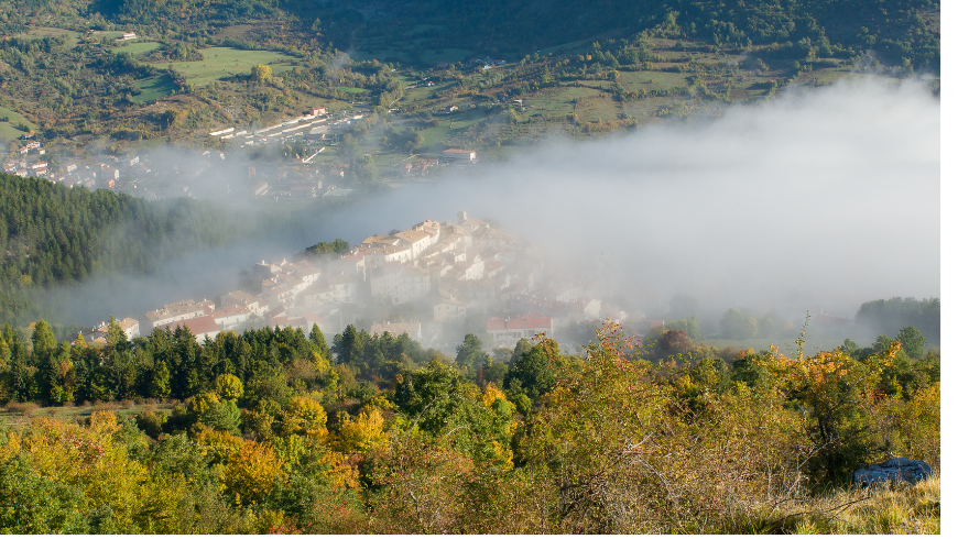 What to see in Foreste Casentinesi, Monte Falterona, Campigna National Park
