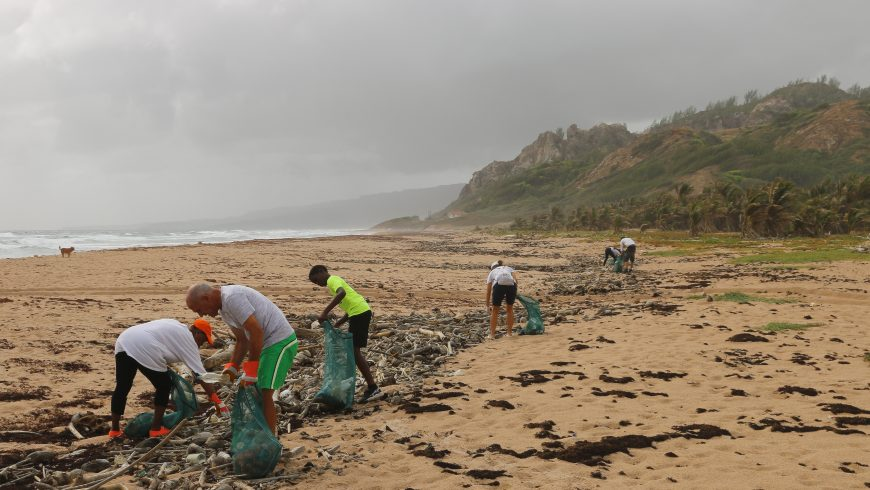 People cleaning a beach